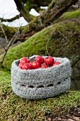 Crab apples in crocheted and felted woollen basket