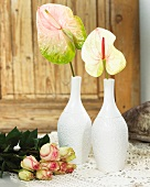 Flamingo flowers in vases