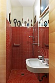 View into bathroom - red mosaic tiles in shower area and plain sink below mirror