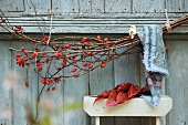 Branch of rosehips on wooden wall