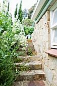 Stone steps in Mediterranean garden of rustic farmhouse