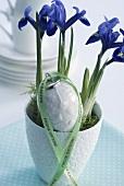 Iris und Porzellanei für Ostern