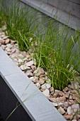 Pflanzenkasten am Haus mit Gräsern in Splittbeet