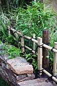 Bed of bamboo behind stone border and bamboo fence tied with twine