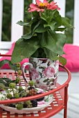 Mug used as plant pot and sprig of blackberries on plate: delicate porcelain with romantic rose