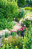 Narrow, winding gravel path between blooming perennials in a summer garden