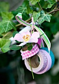 Rolls of washi tape and rose hanging on twig as decoration