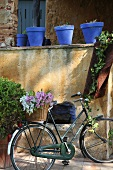 Flowers in basket of bicycle leaning against peeling wall