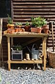 Holztisch mit Pflanzen und Gartenutensilien