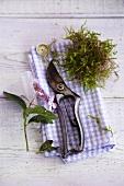 Stillleben aus Gartenschere, Blume und Moosbüschel auf kariertem Tuch