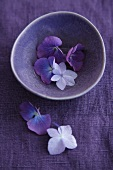 Sill life in purple - hydrangea flowers in a bowl on a linen cloth