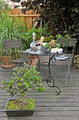 Garden table and chairs in dark metal and bonsai tree on wooden decking in garden