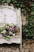 Hydrangea on garden bench