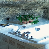 Potted plants on tiled surface next to bathtub in front of rock wall