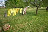 Clothes hanging on clothesline in garden
