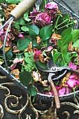 Faded flowers in basket