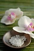 Globuli und Orchideenblüten