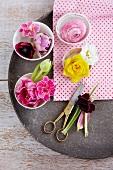 Einzelne Blütenköpfe in kleinen Schälchen (rosa Primel und Tulpe, Narzisse und weiße Primel, dunkelrote Anemone, rosa Tulpe und rosa Primel, rosa Ranunke)