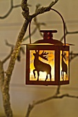 Lit lantern hanging on tree