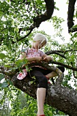 Blonde girl sitting in a tree