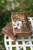 Antiquarian books and fruit blossom on garden chair