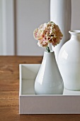 Various white ceramic vases with carnation