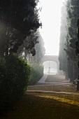 Nebelstimmung in herrschaftlichem Garten