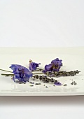 Sprigs of dried lavender and flowers on dish
