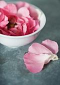 Rose petals in bowl