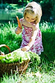 Little girl picking up carrots from basket of vegetables