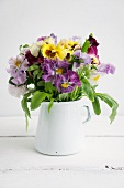 A posy of colourful pansies