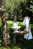 Ceramic washbasin and jug on chair in garden