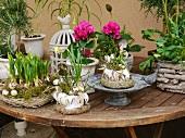 Frühlingshafte Blumendeko auf Holztisch im Freien