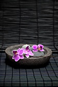 Oriental-style spa decoration - orchid flowers in a stone dish