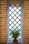 Vergitterte Fensteröffnung mit kleiner, bepflanzter Amphore in Ziegelmauerwerk