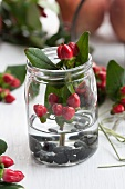 St. John's wort berries in jar with water and pebbles