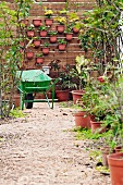 Plant pots on garden path and hung on wall