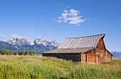 Remains of historic barn in front of the Grand Teton mountains (USA)