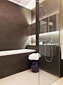 Minimalist, designer bathroom with glass partition