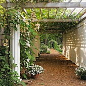 Climber-covered pergola above arcade in well-tended garden with rose arch in distance