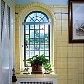 Leaded glass window with rounded arch, potted geranium and horse figurines