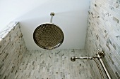 Large showerhead in mosaic tile shower