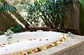 Detail spa tub with spa treatment