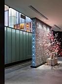 Cherry blossom plant