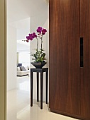Modern cupboard made of nut wood next to a plant stand with orchids in a lobby with a view through a passage of a sofa