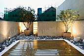 Wooden roof terrace wet with rain in front of illuminated potted plants on strips of gravel
