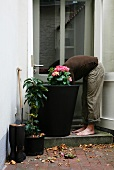 Gardening - man planting flowers in large container in front of garden door