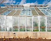 Greenhouse in Public Park