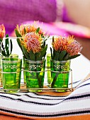 Protea flowers in green, Moroccan tea glasses in metal carrier