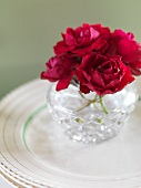 Red roses in crystal vase